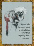 Einstein Poster Quote 1