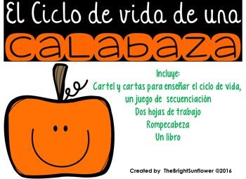 El Ciclo De Vida Teaching Resources   Teachers Pay Teachers