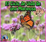 El Ciclo de Vida de una Mariposa: Presentación en PowerPoint