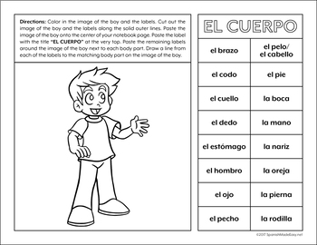 el cuerpo body parts spanish interactive notebook activity tpt