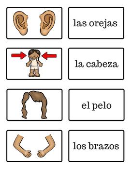 El Cuerpo - The Body - Spanish Flash Cards