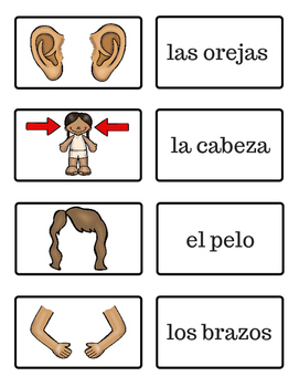 El Cuerpo - The Body - Spanish Flash Cards