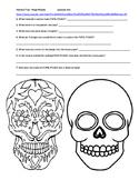 El Dia de los Muertos - Youtube Videos - Papel Picado - Sugar Skulls - Pan Dulce