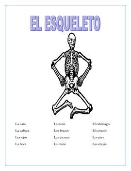 El Cuerpo - El Esqueleto- Label the Skeleton & Body Parts Vocabulary