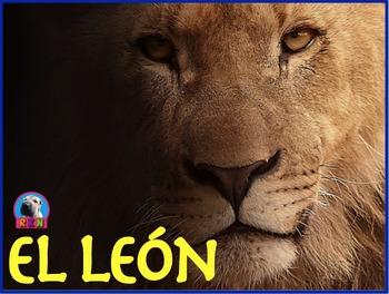 El León - Presentación en PowerPoint y Actividades