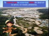 El Medio Ambiente con el Subjuntivo: Deforestación de la selva amázonica packet
