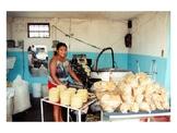 El Mercado Mexicano - The Mexican Market