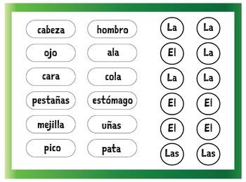 El Pinguino - las partes del cuerpo Spanish worksheet