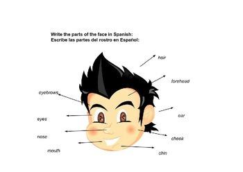 El Rostro: The Face in Spanish