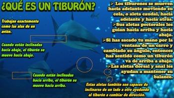 El Tiburón - Presentación en PowerPoint y Actividades