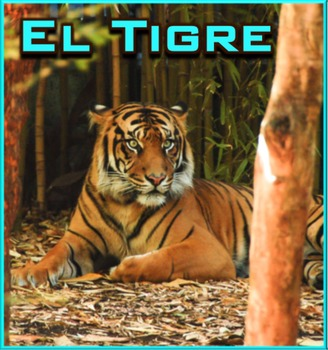 El Tigre - Presentación en PowerPoint y Actividades
