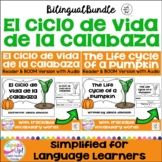 El ciclo de vida de la calabaza ~ Pumpkin Lifecycle Readers {Bilingual}