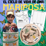 BUTTERFLY LIFE CYCLE IN SPANISH: EL CICLO DE VIDA DE UNA MARIPOSA