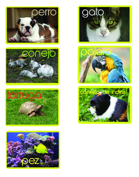 El clima y las mascotas (weather and pets in spanish)