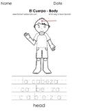 El cuerpo - Body - Páginas para Colorear - Coloring Pages