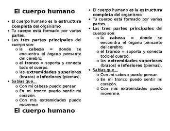 El cuerpo humano - Human Body