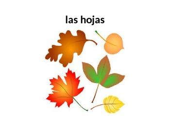 El otoño words
