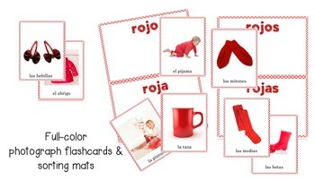 Spanish Noun and Adjective Agreement Lesson based on a Picture Book