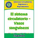Sistemas Circulatorio, Digestivo y Reproductivo: Vasos sanguíneos Gr. 5-8
