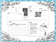 Eleanor Roosevelt Information and Activity Bundle