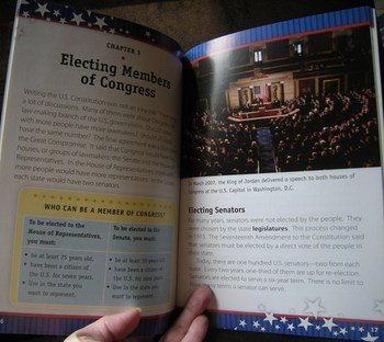 Elections, Electing Leaders and Presidents Resource Lot