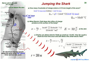 Electric Fields and Sharks or Jumping the Shark