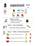 Electric Fruit Experiment
