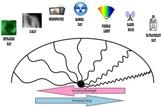 Electromagnetic Spectrum - PowerPoint