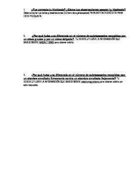 Electromagnetism Lab (DUAL LANGUAGE SPANISH)