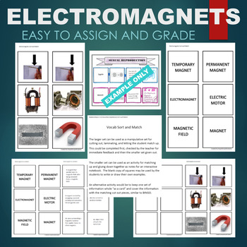 Electromagnets (Temporary, Permanent, Motor, etc) Sort & Match Activity