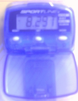 Electronic Pedometer