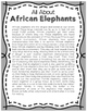 Elementary Animal Research Informational Text- African Elephants!
