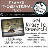 Elementary Animal Research Informational Text- Beavers!