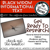 Elementary Animal Research Informational Text- Black Widows!