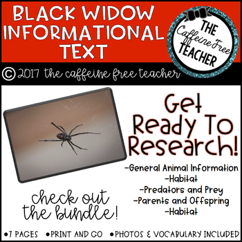 Elementary Animal Research Information- Black Widows!