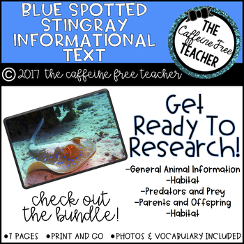 Elementary Animal Research Informational Text- Blue Spotted Stingray!