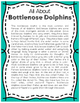 Elementary Animal Research Informational Text- Bottlenose Dolphin!