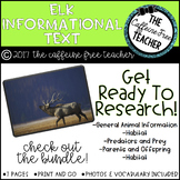 Elementary Animal Research Informational Text- Elk!