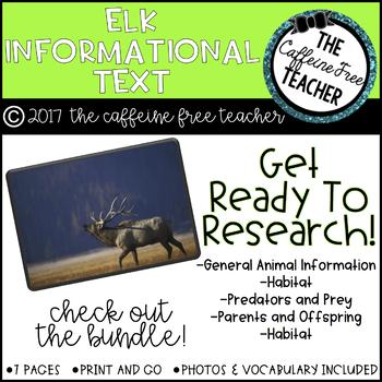 Elementary Animal Research Information- Elk!