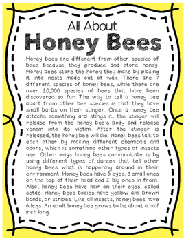 Elementary Animal Research Informational Text- Honey Bee!
