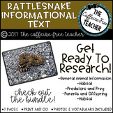 Elementary Animal Research Informational Text- Rattlesnake!