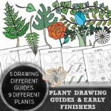 Elementary Art, Middle School Art Plant Drawing Guides & E