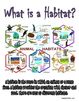 Elementary Biome and Habitat Posters