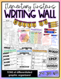 Elementary Einsteins Writing Wall