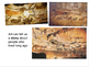 Elementary Lascaux Cave Painting Presentation