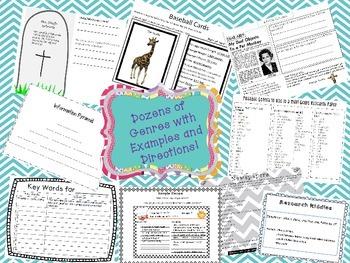 Elementary Multi-Genre Research- Fun, Fun, Fun