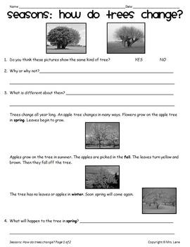 Elementary Seasons Worksheets