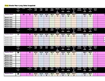 Elementary Year-Long Literacy Data Spreadsheet