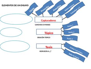 Elementos de un Ensayo Argumentativo en Español