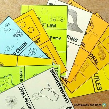 Elements and compounds- Interactive science notebook foldable